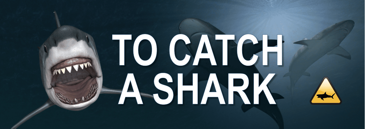 Options Strategy Course - To Catch a Shark