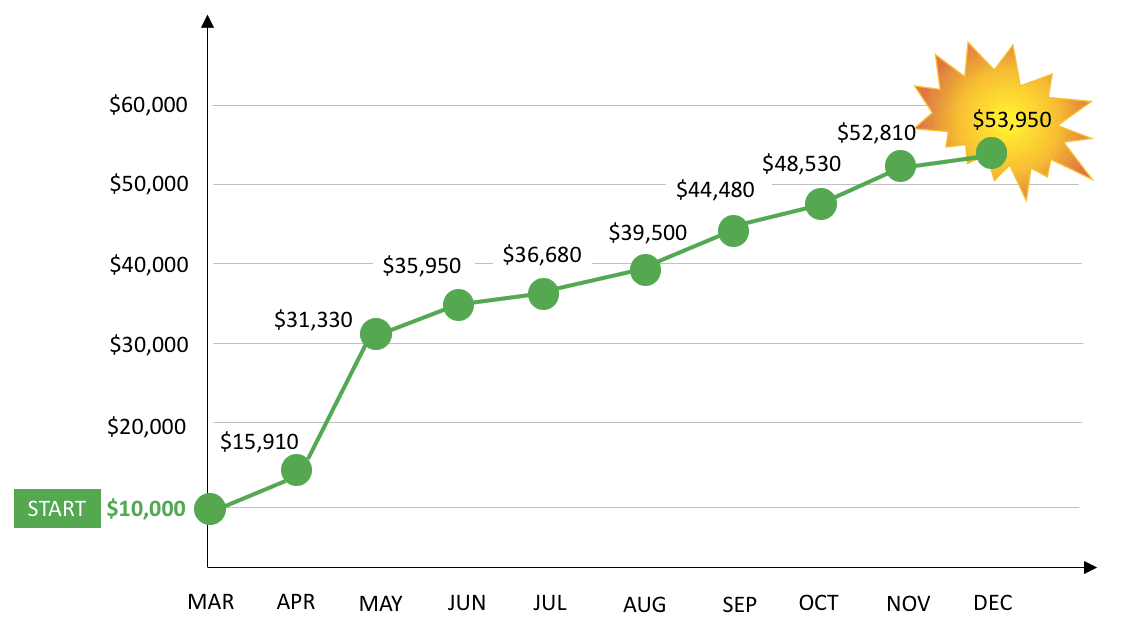 WP Mar to Nov Results